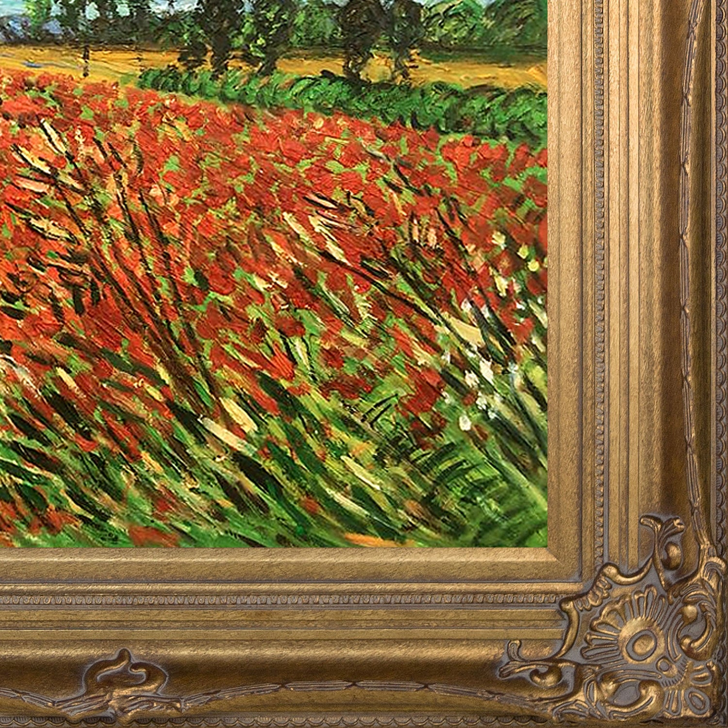 Field Of Poppies By Vincent Van Gogh Framed Hand Painted Oil On