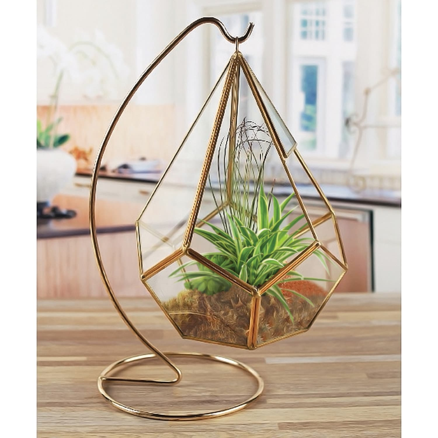 Shop Circleware Hanging Glass Terrarium With Stand Gold Geometric