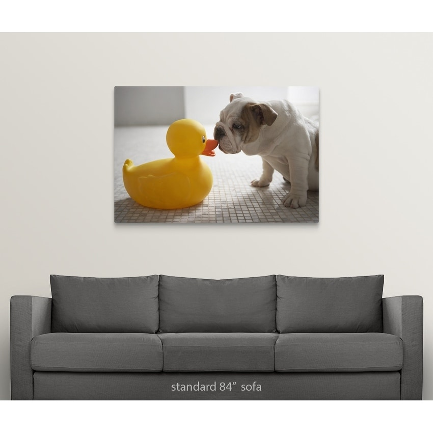 Premium Thick-Wrap Canvas entitled Dog with plastic duck - Multi-color