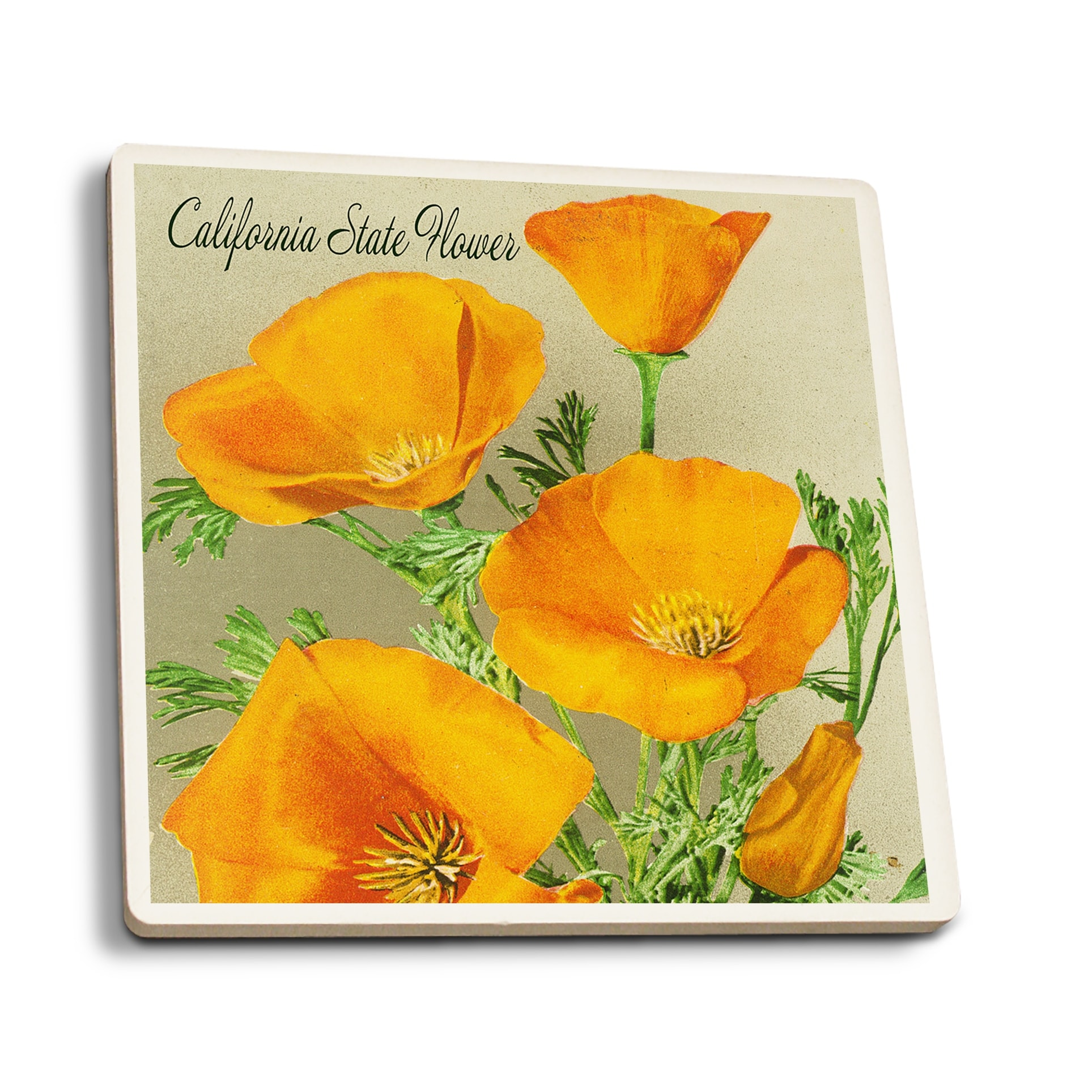 Shop California State Flower Poppy Lp Artwork Set Of 4 Ceramic