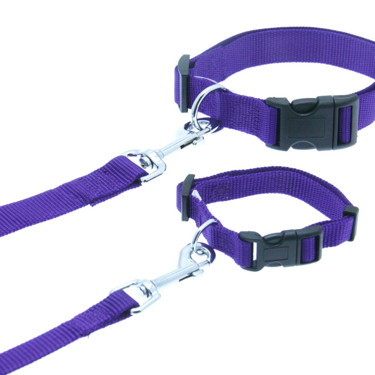 Shop Barking Basics Dog Leash - Purple - 5 8