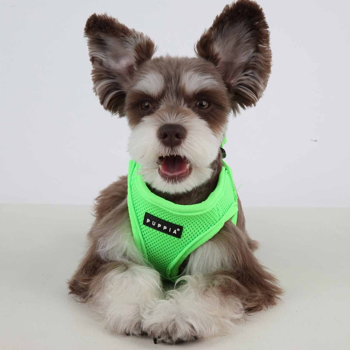 Shop Neon Mesh Soft Dog Harness Vest by Puppia - Green - Small ...