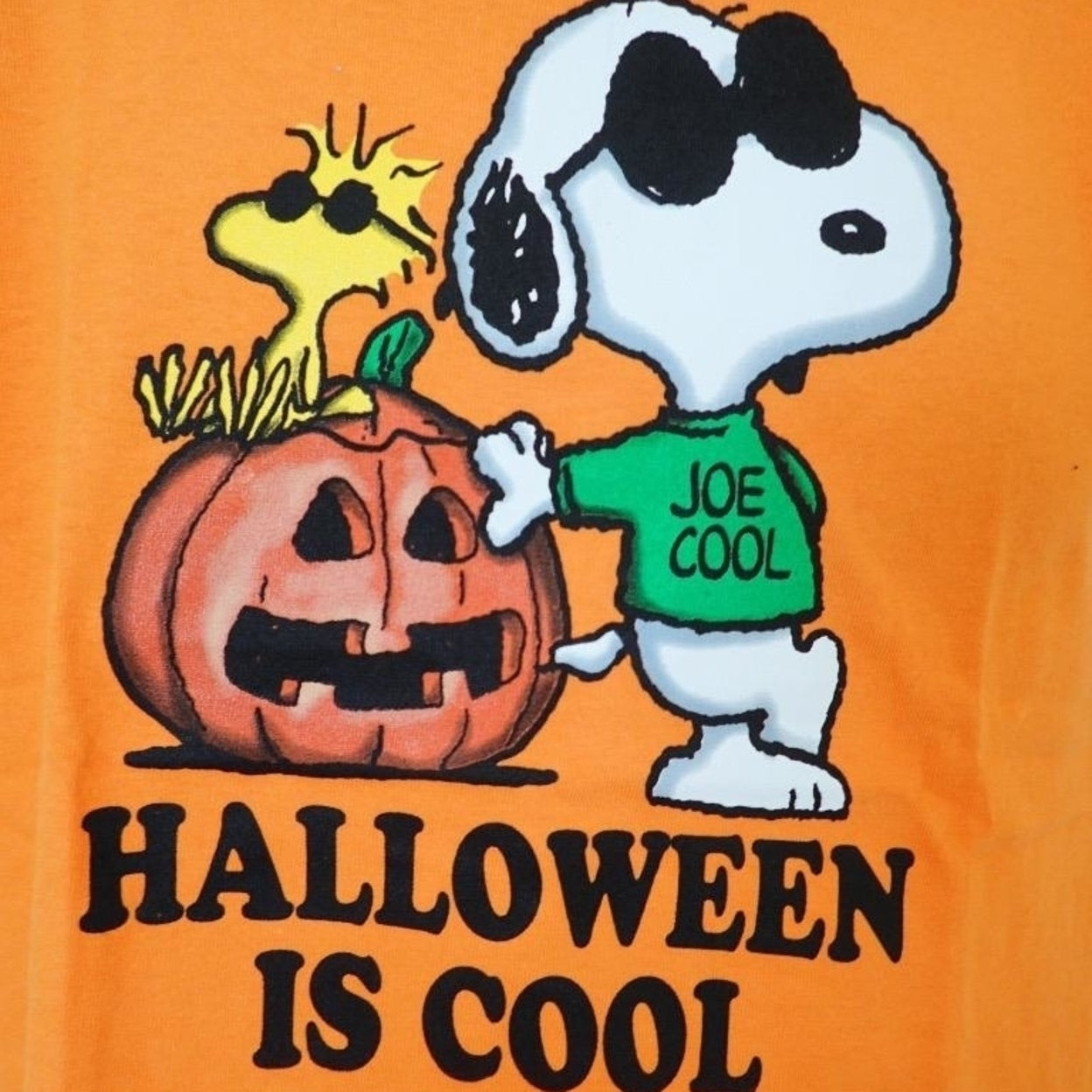collection of peanuts halloween t shirts - halloween costumes ideas 2018