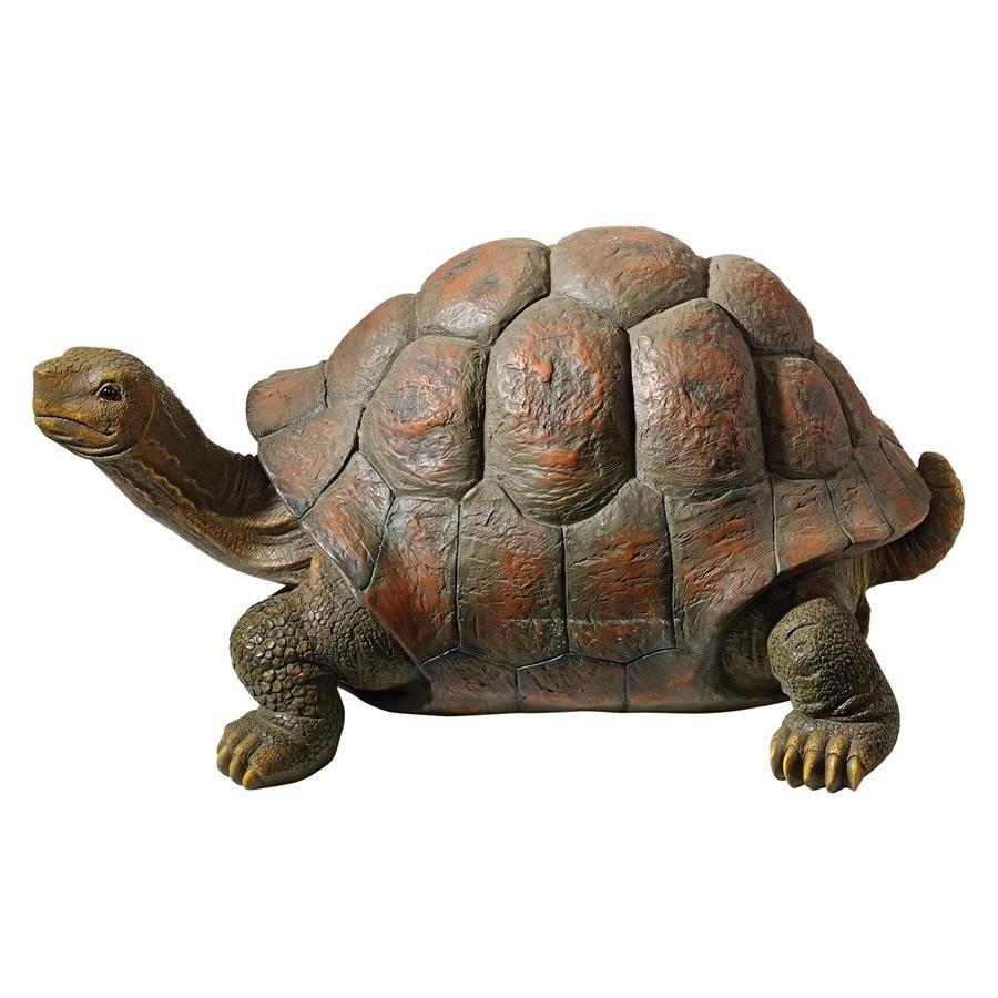 Shop Design Toscano The Cagey Tortoise Statue: Medium - Free ...