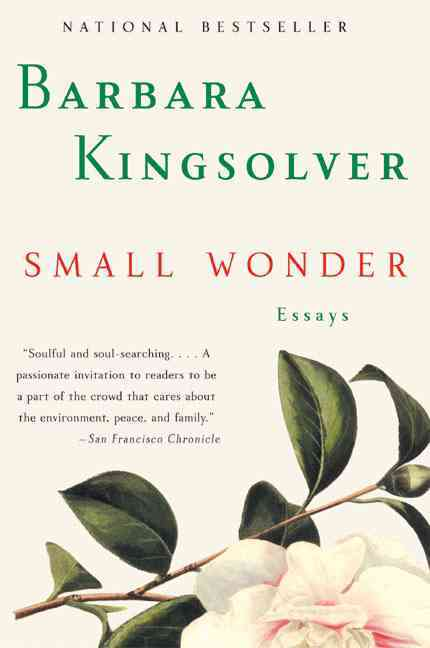 Small Wonder (Paperback) - Thumbnail 0