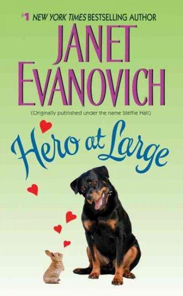 Hero at Large (Paperback)