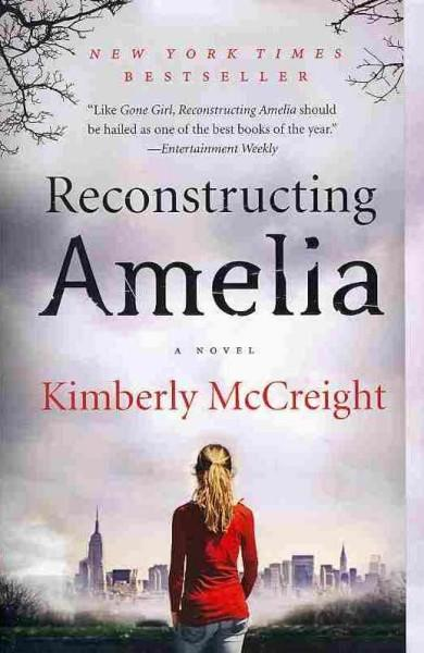 Reconstructing Amelia (Paperback)