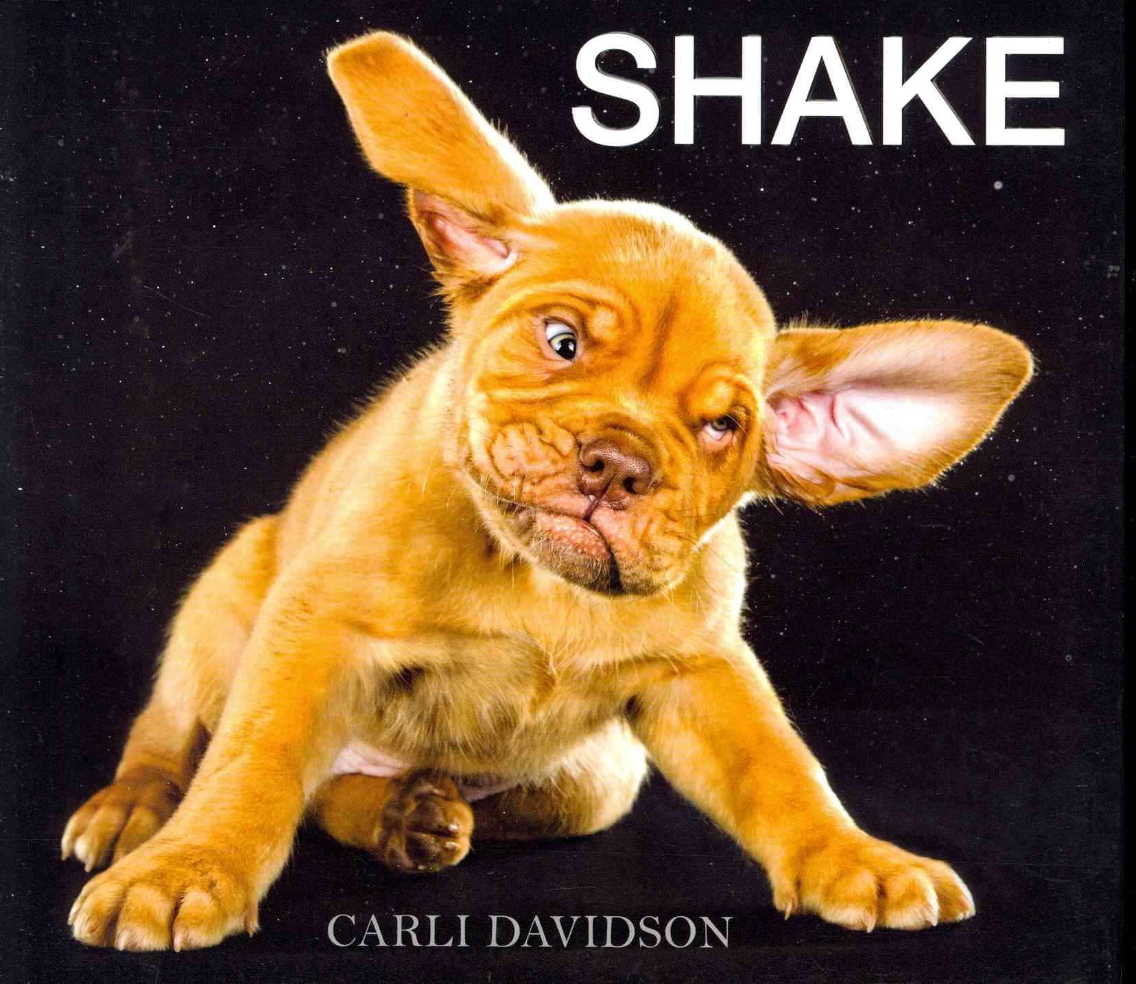 Shake (Hardcover)