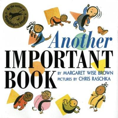 Another Important Book (Paperback)