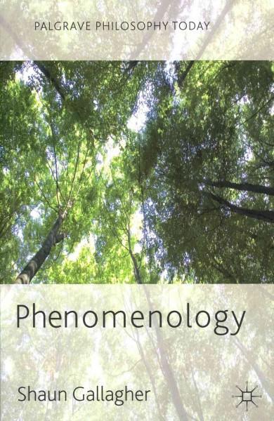 Phenomenology (Paperback)