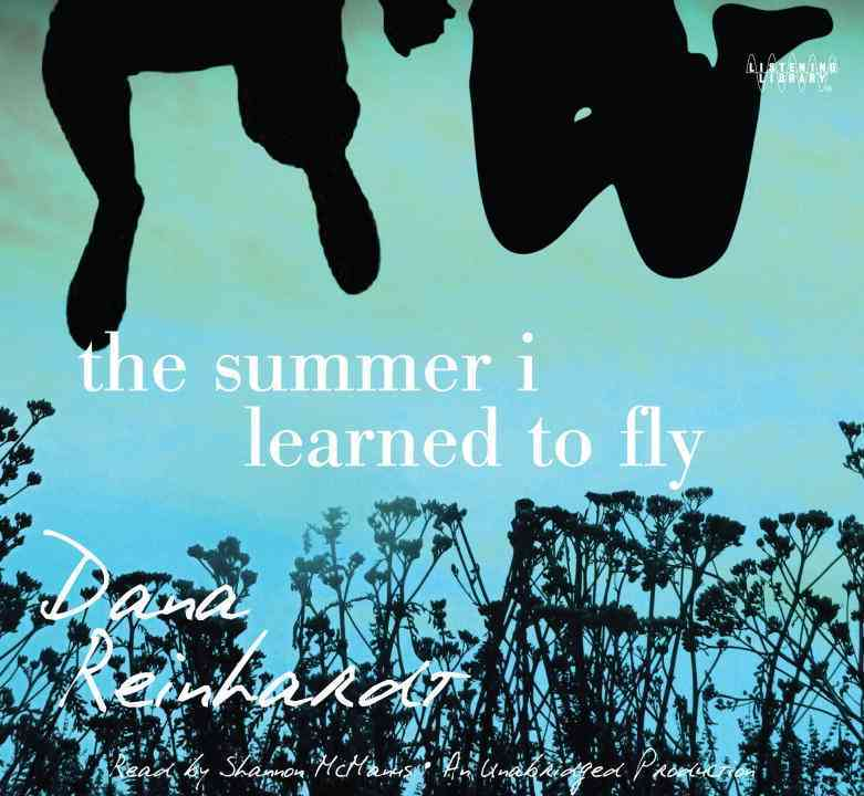 The Summer I Learned to Fly (CD-Audio)