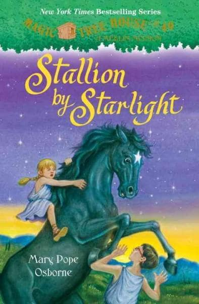 Stallion by Starlight (Hardcover)