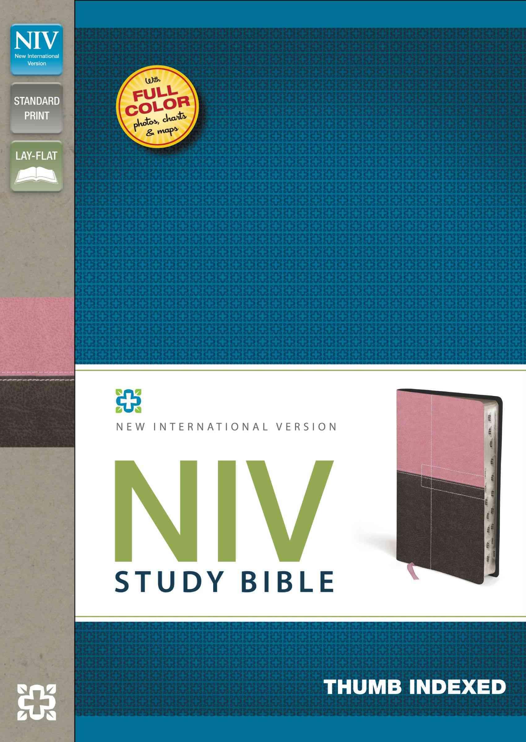 NIV Study Bible: New International Version, Berry Creme/Chocolate, Italian Duo-Tone (Paperback)