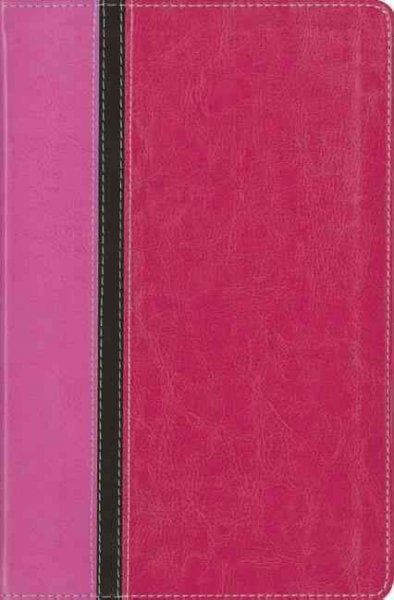 The Message Parallel Study Bible: New International Version, Orchid/Raspberry, Italian Duo-Tone, Personal Size, N... (Paperback)