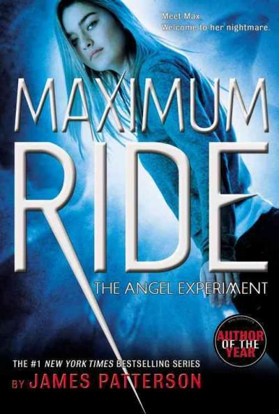 The Angel Experiment (Paperback)