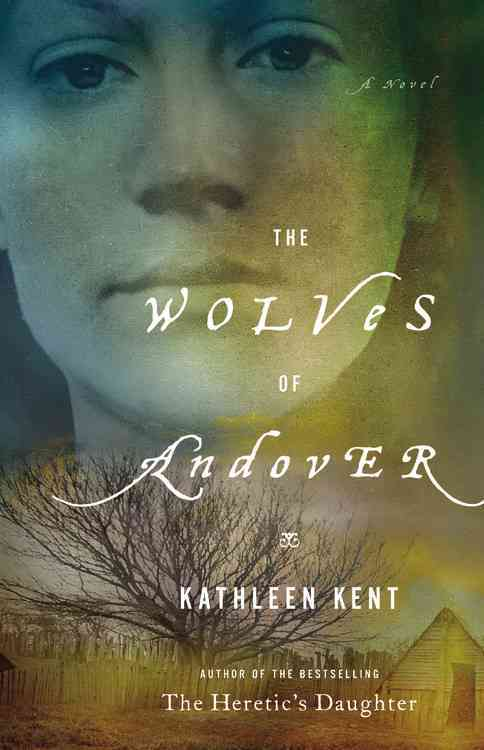 The Wolves of Andover (Hardcover)