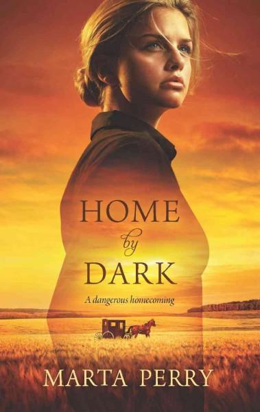 Home by Dark (Paperback)