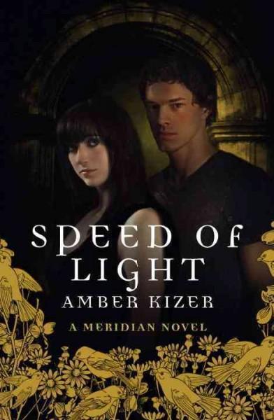 Speed of Light (Hardcover)