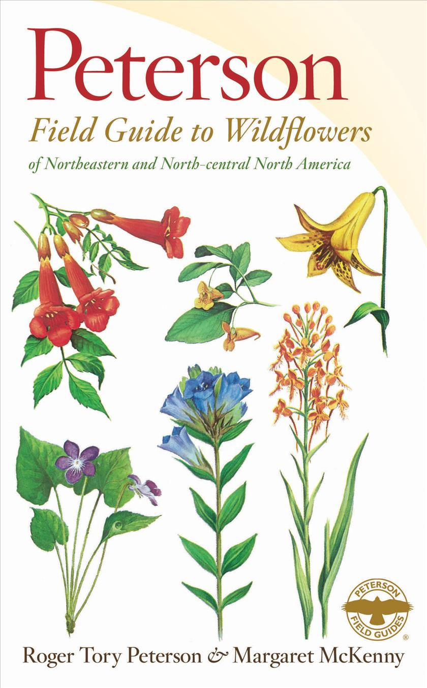 A Field Guide to Wildflowers: Northeastern and North-Central North America (Paperback)