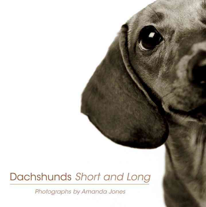 Dachshunds Short and Long (Paperback)