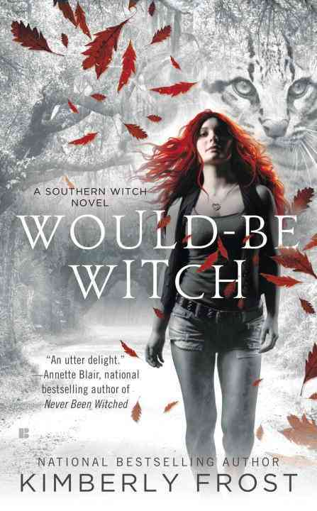 Would-Be Witch (Paperback)