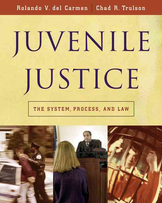 Juvenile Justice: The System, Process, And Law (Hardcover)