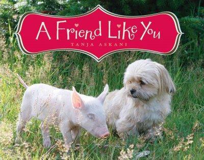 A Friend Like You (Hardcover)