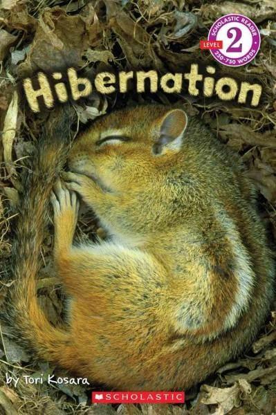 Hibernation (Paperback)