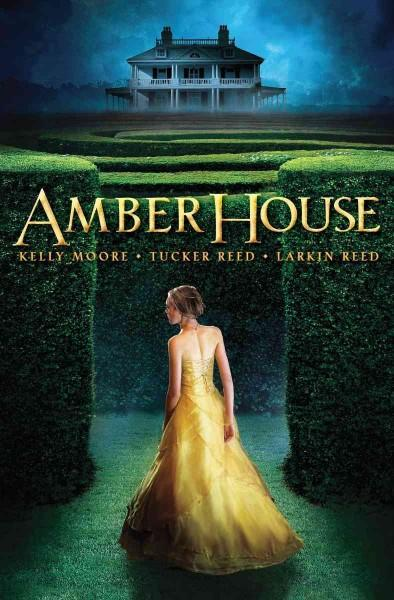 Amber House (Paperback)