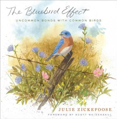 The Bluebird Effect: Uncommon Bonds with Common Birds (Hardcover)