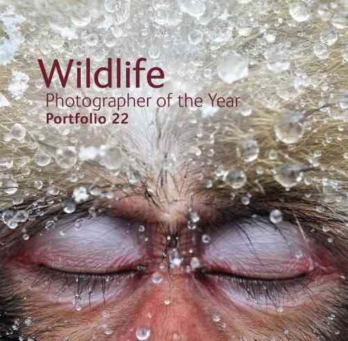 Wildlife Photographer of the Year Portfolio 22: Portfolio 22 (Hardcover) - Thumbnail 0