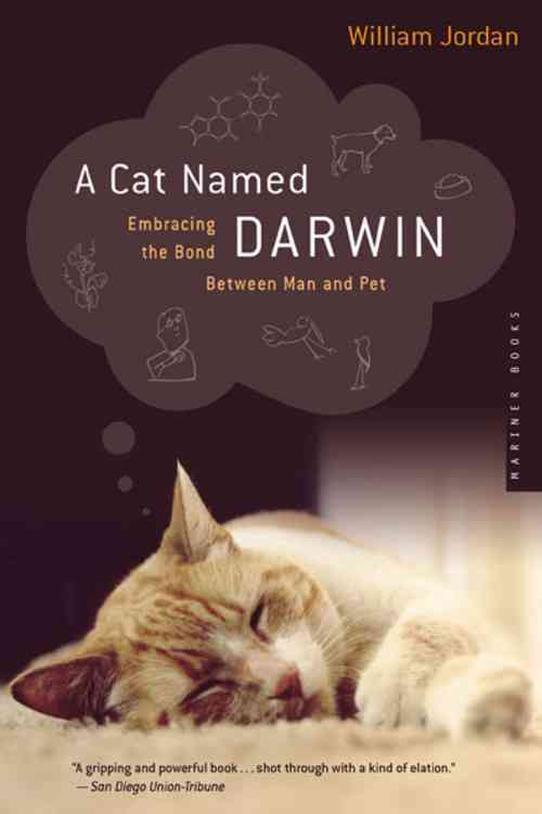 A Cat Named Darwin: Embracing the Bond Between Man and Pet (Paperback)