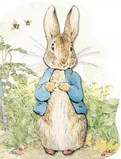 Peter Rabbit (Board book)