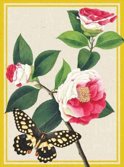 Winterthur Butterflies Everyday Embellished Notecards (Cards)