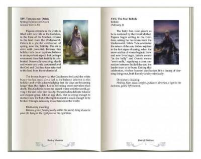 Book of Shadows Tarot (Paperback)