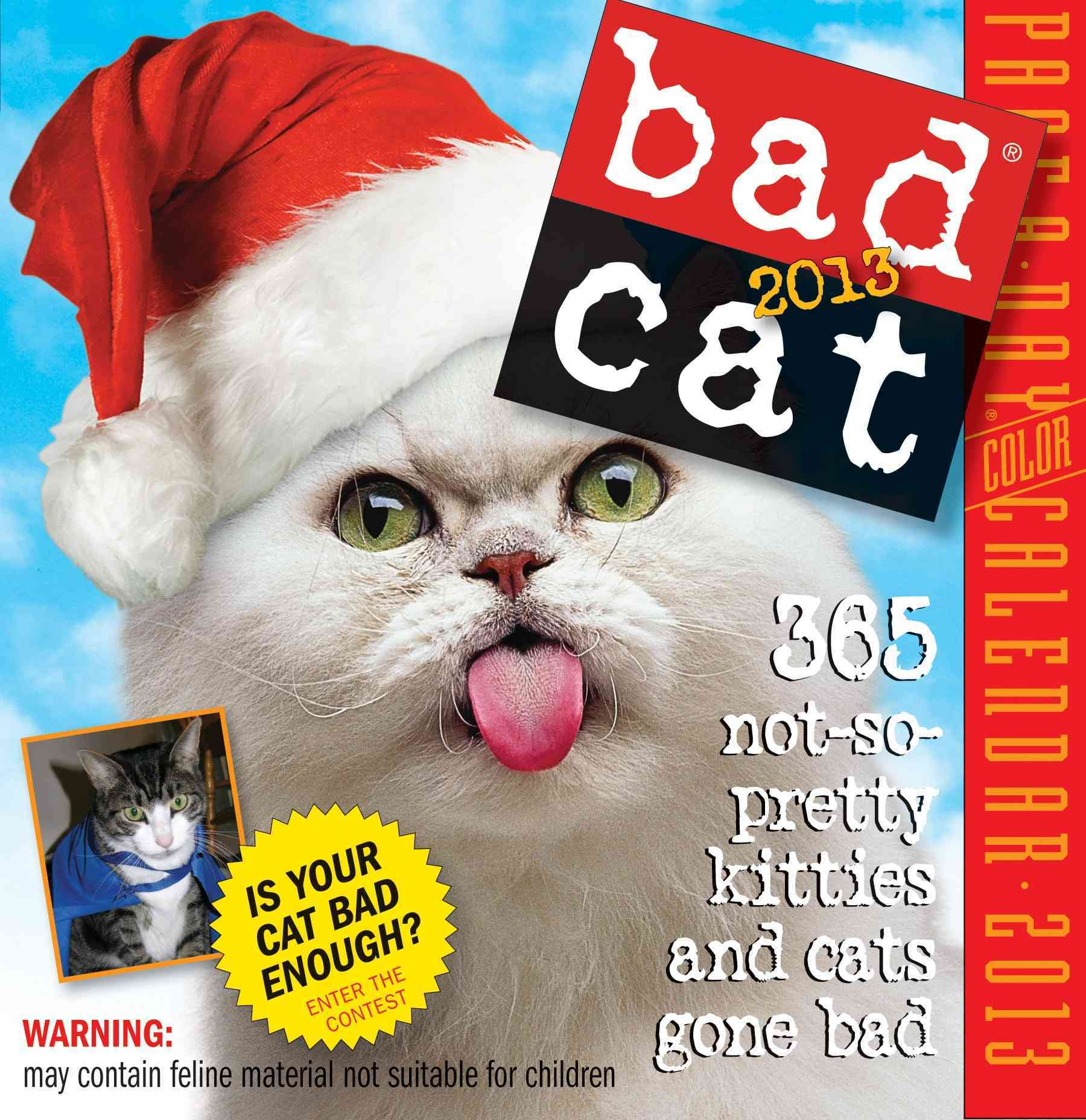 Bad Cat 2013 Calendar (Calendar)