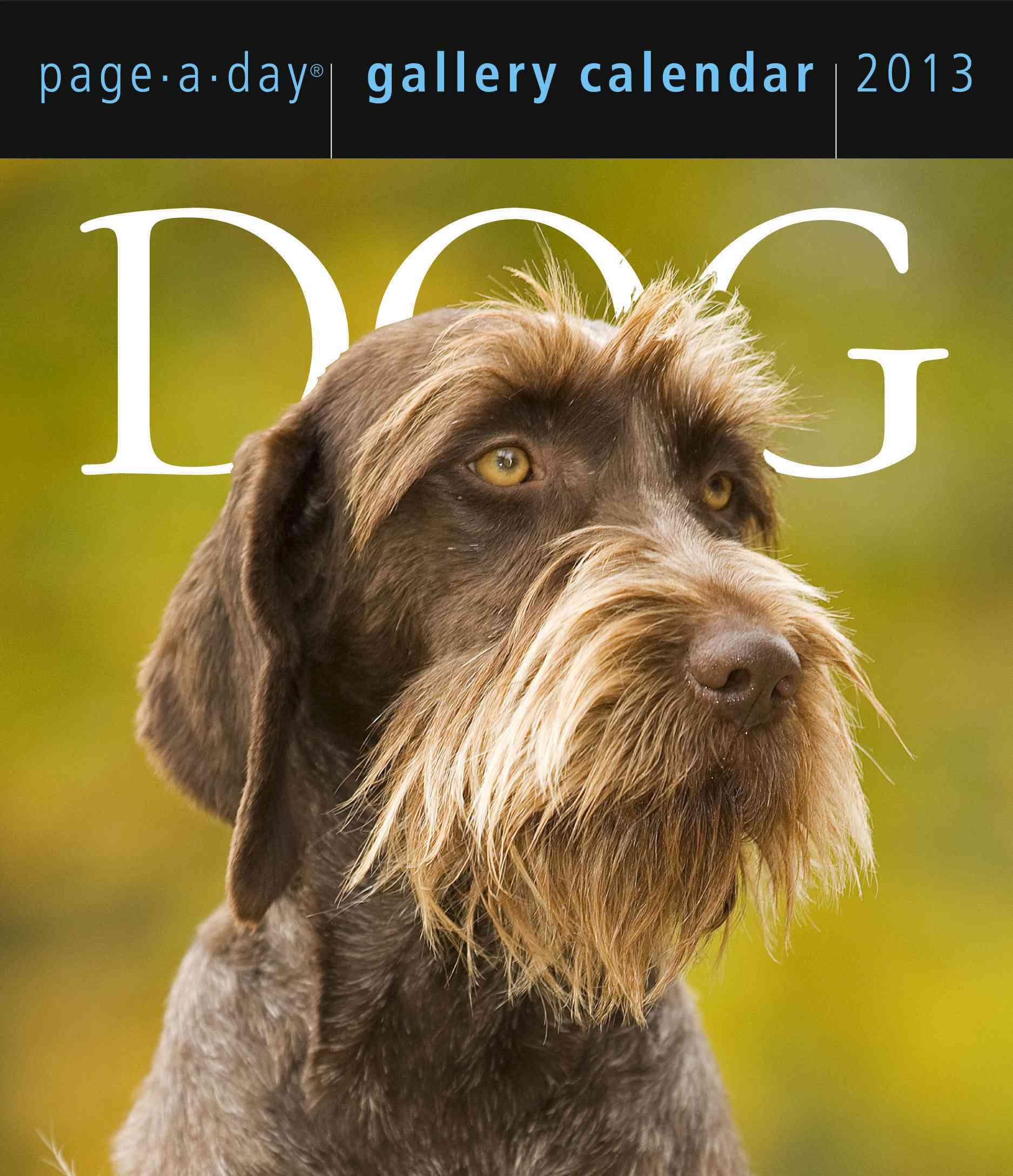 Dog Gallery 2013 Calendar