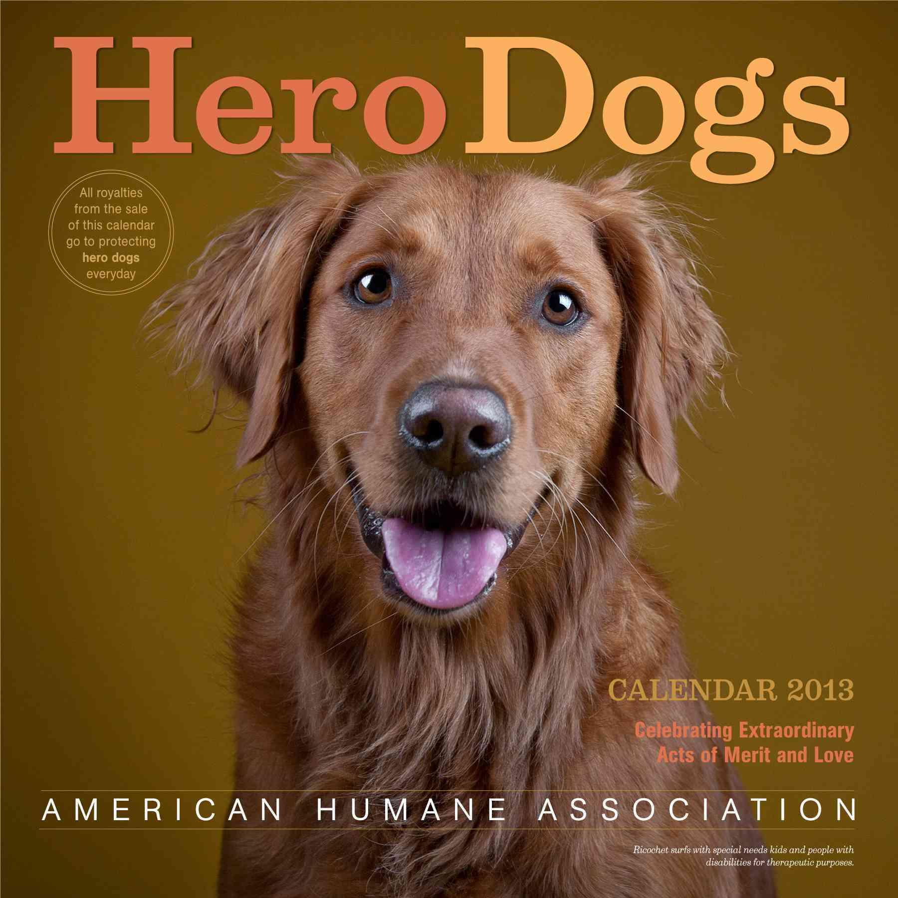 Hero Dogs Calendar 2013