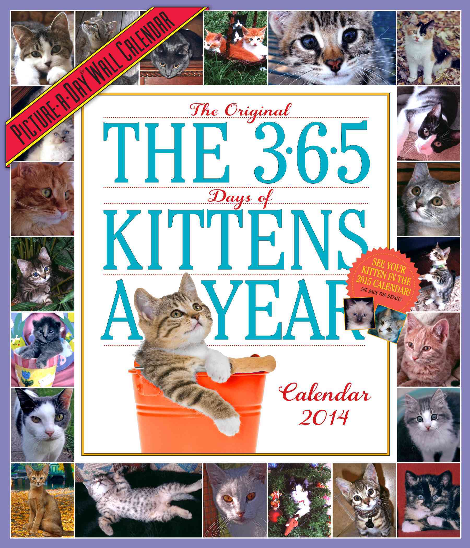 365 Days Of Kittens-A-Year 2014 Calendar (Calendar)