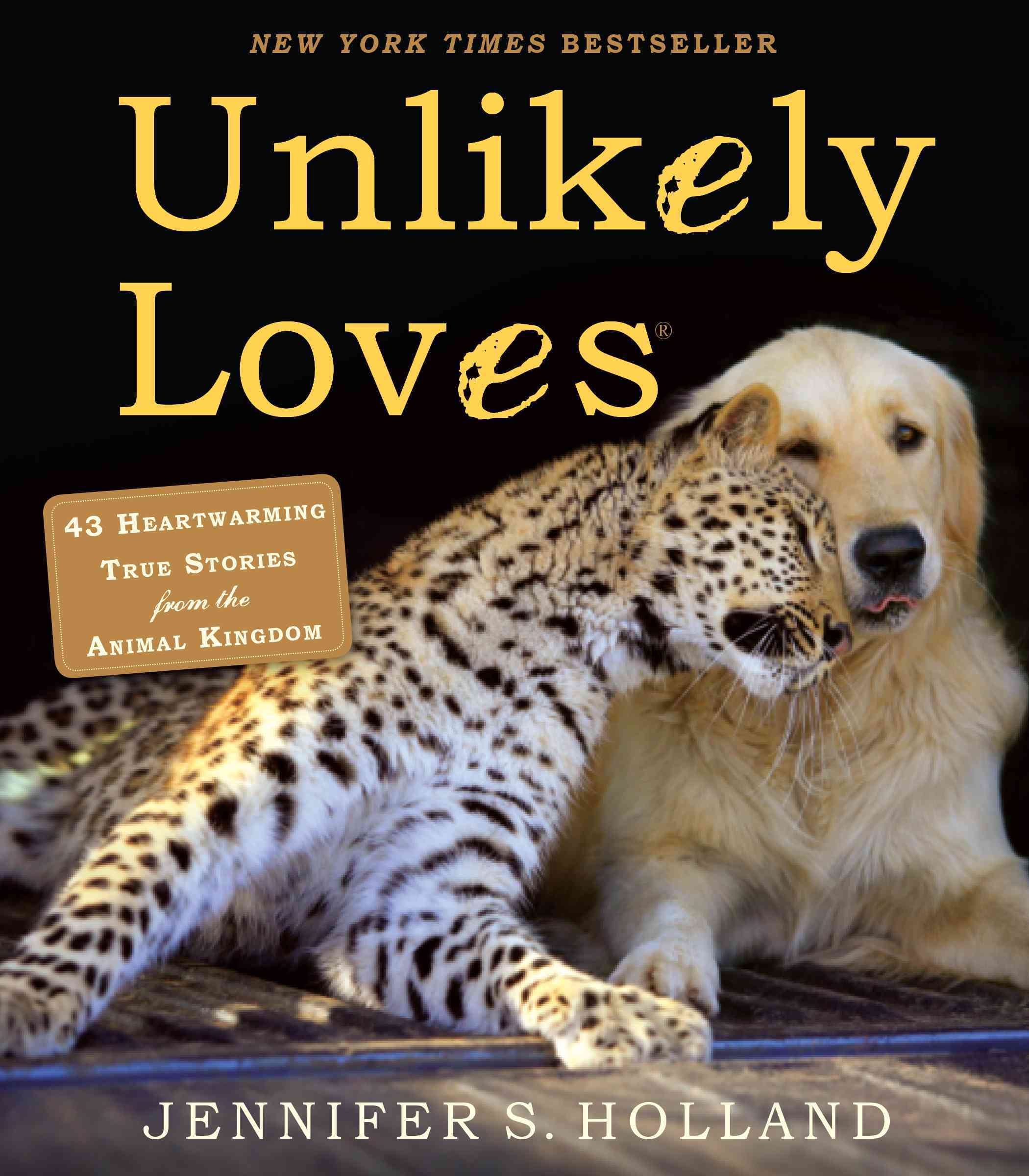 Unlikely Loves: 43 Heartwarming Stories from the Animal Kingdom (Paperback)