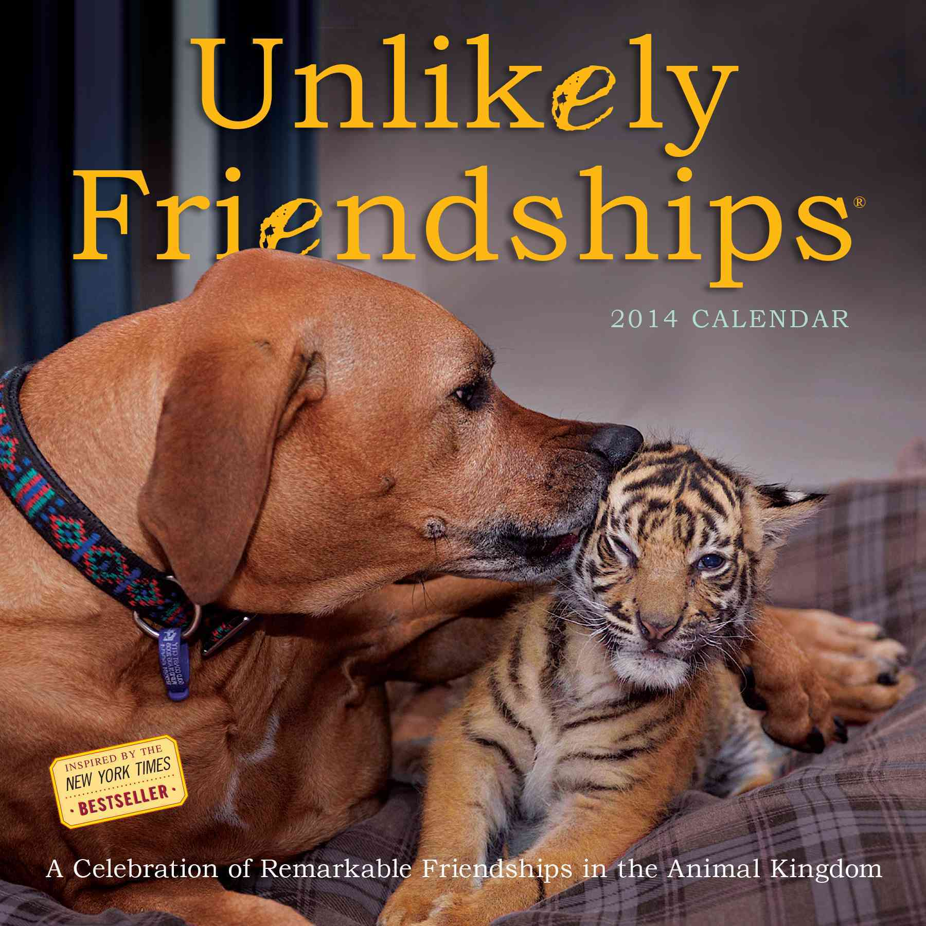 Unlikely Friendships 2014 Calendar: A Celebration of Remarkable Friendships in the Animal Kingdom (Calendar)