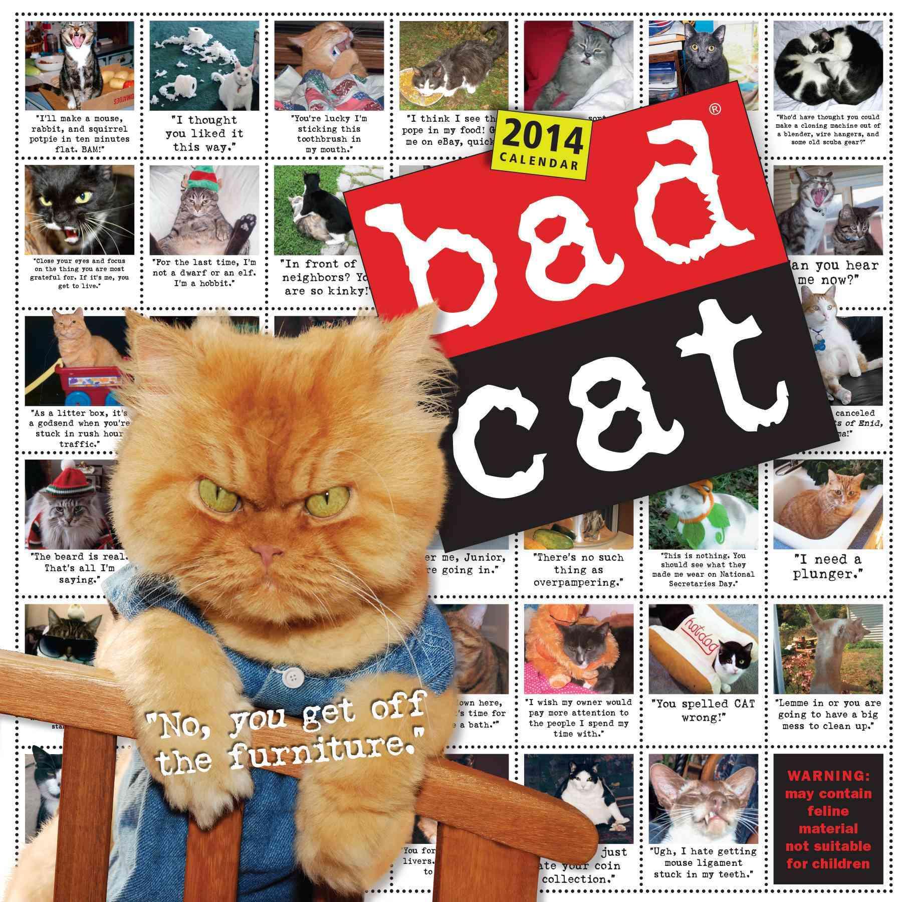 Bad Cat 2014 Calendar (Calendar)