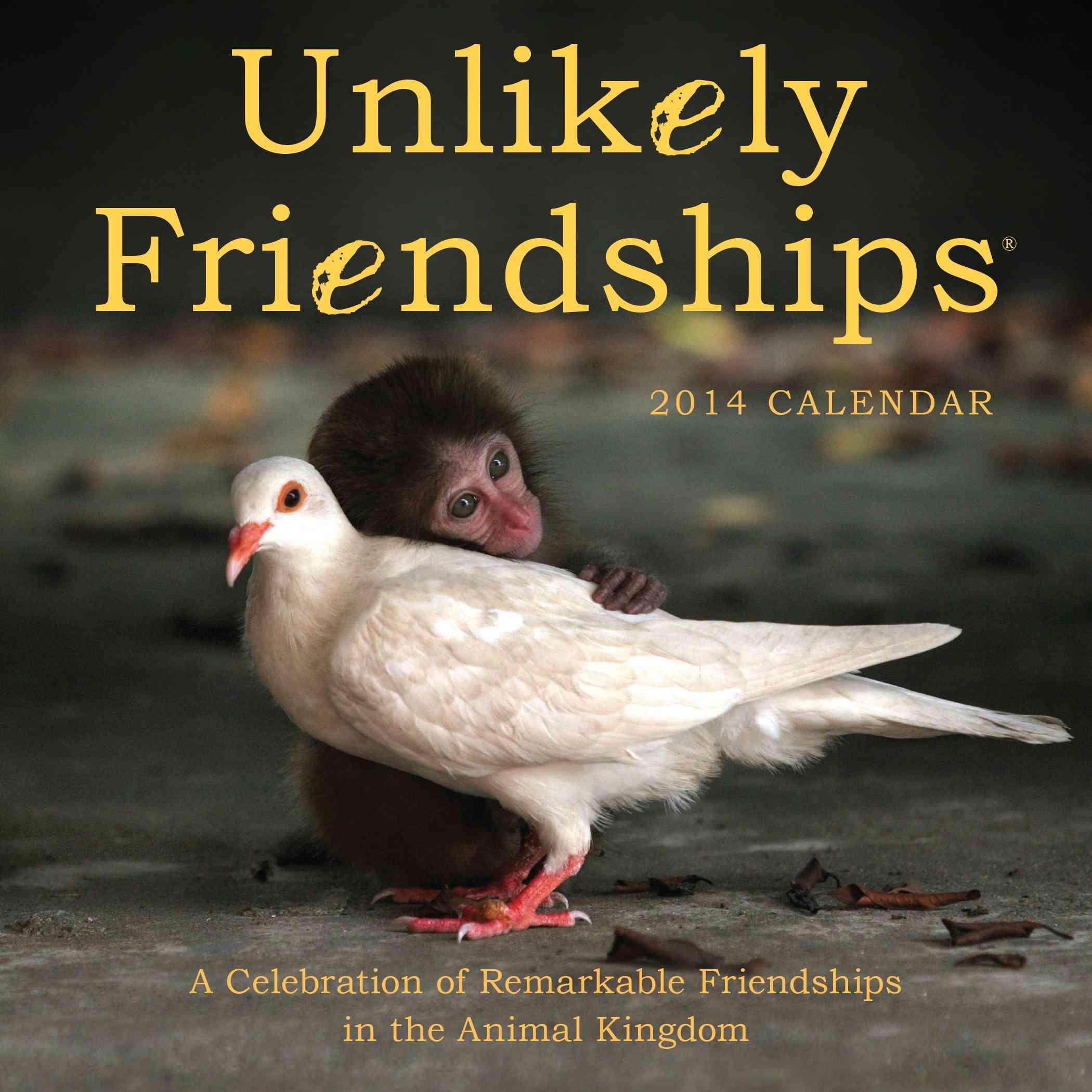 Unlikely Friendships 2014 Calendar (Calendar)