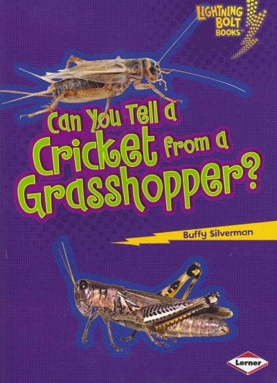 Can You Tell a Cricket from a Grasshopper? (Paperback)