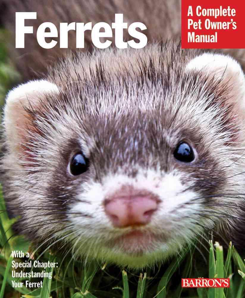 Ferrets (Paperback)