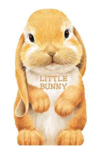 Little Bunny (Board book)