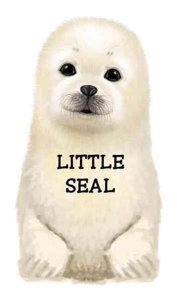 Little Seal (Board book)