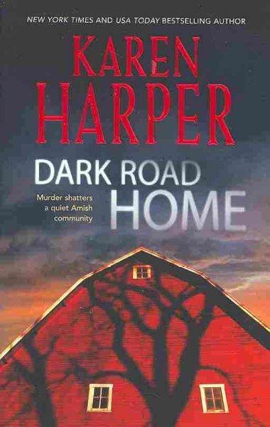 Dark Road Home (Paperback)