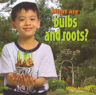 What Are Bulbs and Roots? (Paperback)
