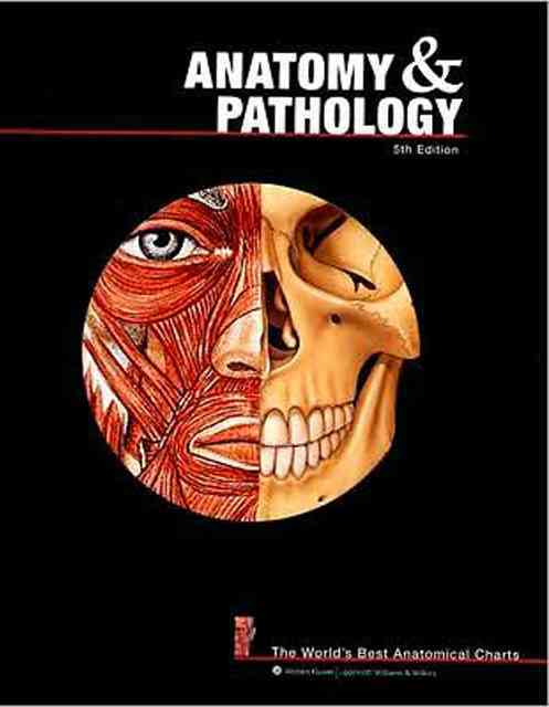 Anatomy & Pathology: The World's Best Anatomical Charts (Paperback)